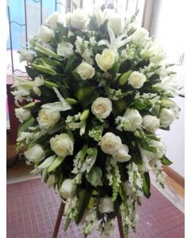 Condolencias 07